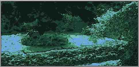 site Maitre Philippe de Lyon étang clos landar l'arbresle